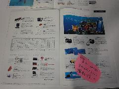 2011honsyaDSC07312.jpg