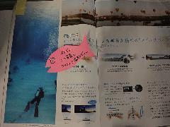2011honsyaDSC07313.jpg