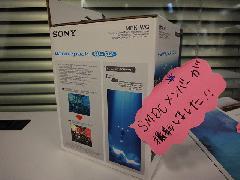 2011honsyaDSC07314.jpg